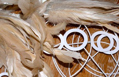 {Plumes}