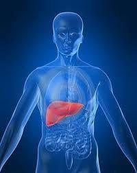 Epatite B, test gratuito fino a metà giugno in 15 città italiane