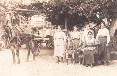 Familles du XXe siècle à Cavaillon