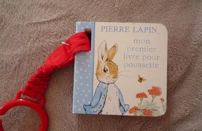 "Analyse littéraire : ""Pierre Lapin"""