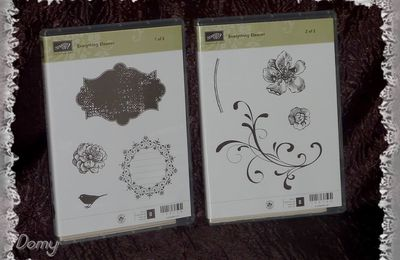 Récompense Stampin'Up