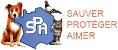 "PETITION 2012 ""BAS LES MASQUES"" A LA SPA SOCIETE DE PROTECTION DES ANIMAUX SIEGE DE PARIS !"