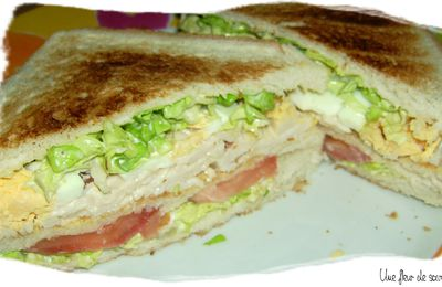 Club sandwich de Julie Andrieu