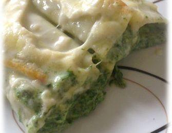 Cannellonis épinards, parmesan et ricotta