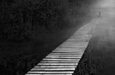 La voie symbolique
