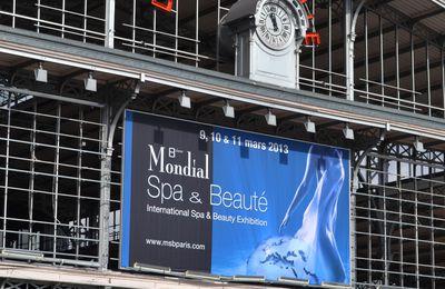 Mondial Spa et Beauté 2013
