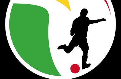 Bilan un stade pour l'Afrique 2012