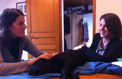 Hyzia, chiot Labrador de 3 mois en consultation ostéo.
