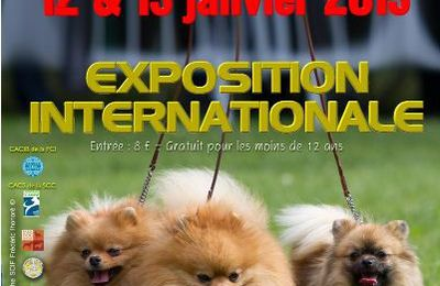 PARIS DOG SHOW CACIB - 13 janvier 2013