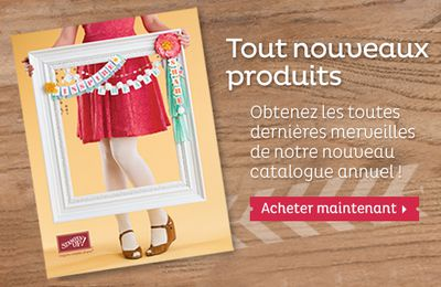 Nouveau Catalogue Annuel 2013/2014 Stampin'Up!