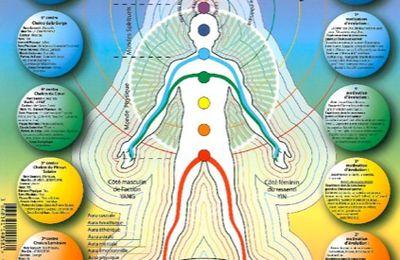 Pourquoi l'être humain a-t-il besoin d'énergie pour vivre ?