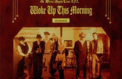 「Woke Up This Morning (The Chosen Mix)」- Alabama 3