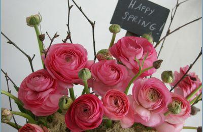 Happy Spring...