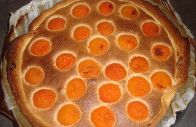 Tarte à l'abricot et à la frangipane