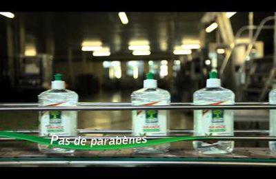 L'Arbre Vert, Leader des produits d'entretien écologiques