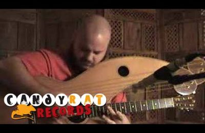 Andy McKee - Into the Ocean