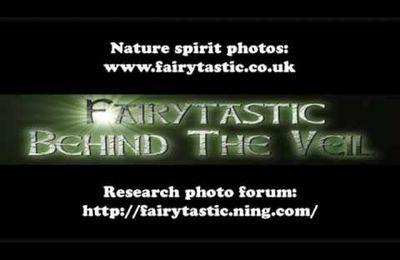 Des photos de fées et esprits de la nature