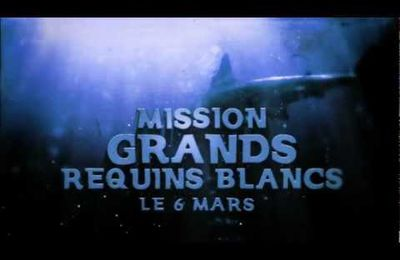 Mission : Grands Requins Blancs arrive sur MCM !