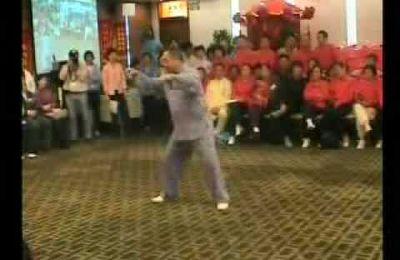 démonstration de Feng Zhiqiang en 2004
