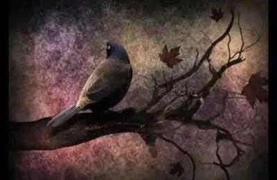 !*!*! Chant d'automne, Charles Baudelaire !*!*!