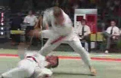 Ju Jutsu European Championship Duo