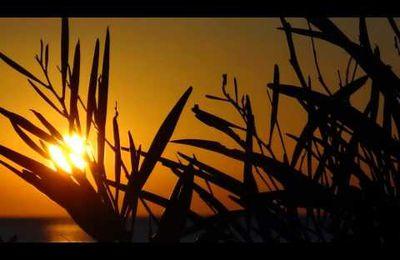Meine Fotowebseite Djerba Sun