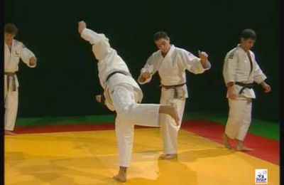 Technique d'Uchi Mata