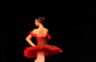 Esmeralda Variation - La Esmeralda - Svetlana Gaida's Kraków