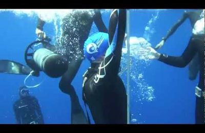 A dive to -101m