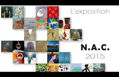 à la Une = News ! VIDEO pour (re)visiter l' éxposition du N.A.C. 2015 à la Maison de la culture du Japon à Paris
