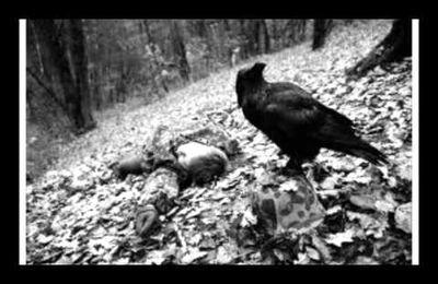 Чёрный ворон (Протяжная песня донских казаков) / Noir corbeau (Chant mélancolique des cosaques du Don)