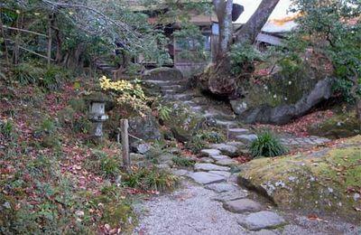 Feuilles d'automne à Hakone : la suite