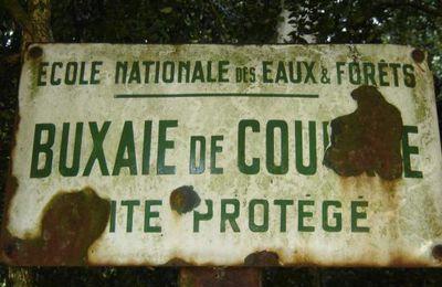 Pesticides et collectivités: quand Père Ubu légifère
