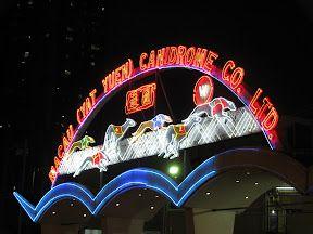 Courses de levriers - Canidrome de Macau