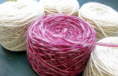 Test knit Pivoine