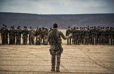 Dongradi 2016 : exercice de combat interarmes en zone désertique qui a regroupé plus de 500 militaires français, djiboutiens et américains