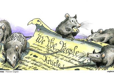"""WE THE PEOPLE"" ... ""WE THE LOBBISTS"" ... or ... ""WE THE RATS"""