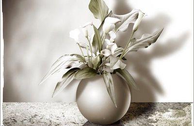 Le vase blanc