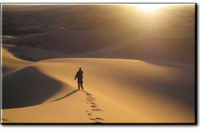 Mt 7, 6.12-14  Aller son chemin d'humanité…