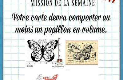 DEFI  PASSION  CARTES CREATIVES 495