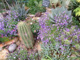 Jardin du Clos Fleuri dans la Drôme