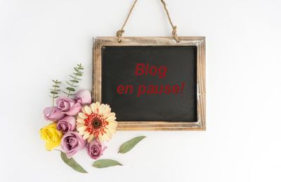 Blog en pause ! Blague à part ! ... de Pierre et de Rotpier
