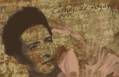 Carnet de Voyages ...