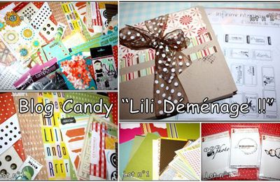 un peu de scrap : blog candy