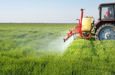 Glifosato, Monsanto accusata di collusione con l'Agenzia di protezione ambientale Usa