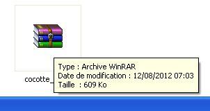 Téléchargements des fichiers