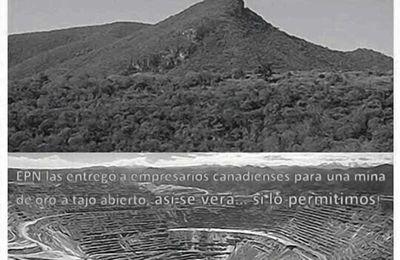 Mexique- Miroirs des peuples indigènes du CNI (congrès national indigène) - Peuple Nahua de Xoxocotla, Morelos