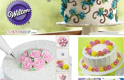 Mes stages et formations Wilton