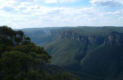 La chasse bientôt autorisée dans les parcs nationaux de Nouvelle-Galles du Sud. ( greenetvert.fr)