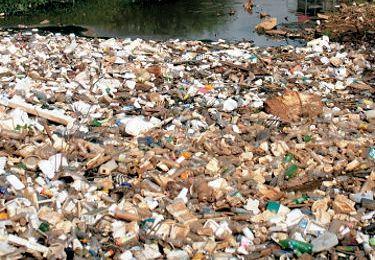 On nous demande notre avis....sur les déchets à la Réunion